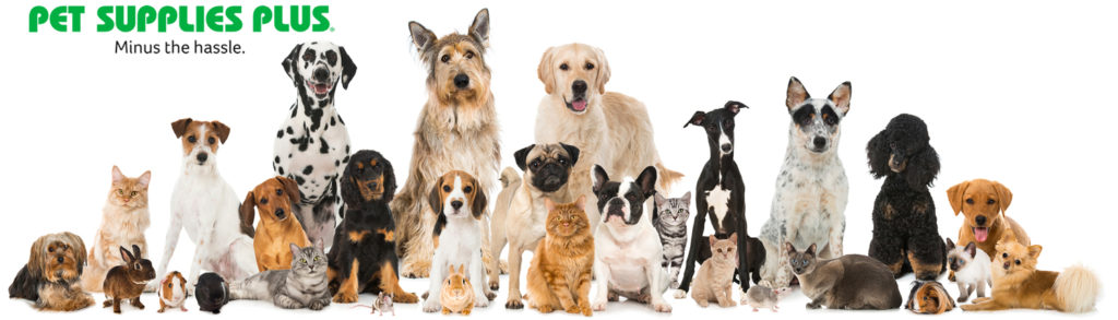 Pet Supplies Plus Cares – Partnering with Pets and Community!